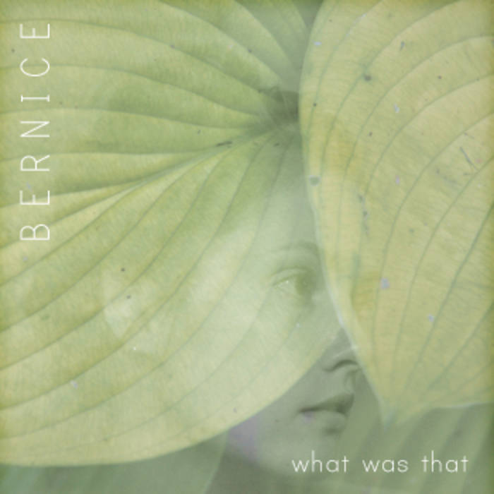 http://bernice.bandcamp.com/album/what-was-that